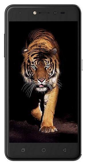 Best Phones under 8000 in India